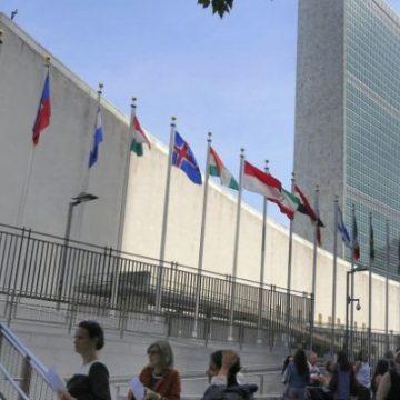 L'Onu: adesso basta con censura della rete. Rispettare i diritti umani